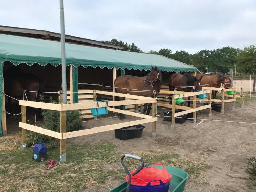 Pferdeboxen-Zelt